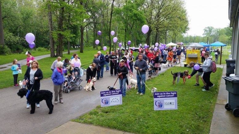 "A scene from Saturday's ""Bark for Life."" Photo by: Jay Garrison"