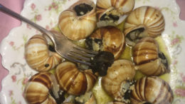 Escargot is better known as snails. Photo by: Nancy Carlson