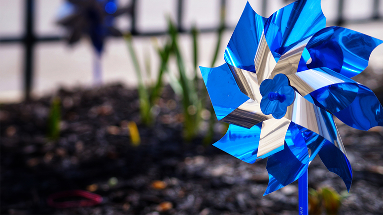 The Pinwheel is the symbol for Prevent Child Abuse America. Photo by: Matt Howell