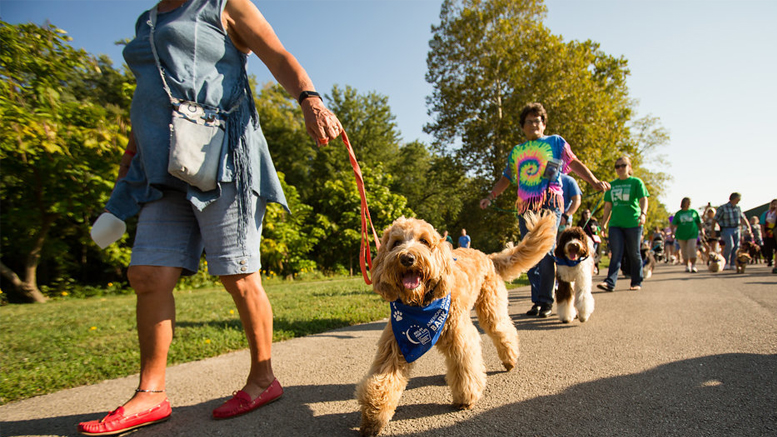 Bark For Life of Delaware County will be held Saturday, September 29th at Morrow's Meadow in Yorktown. Photo provided.