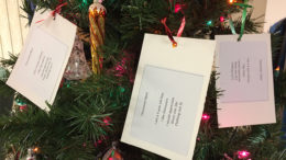 Local kids' Christmas wishes in cards tied to trees. Photo by: Nancy Carlson