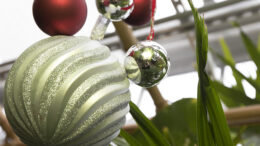 Christmas ornaments at the greenhouse. Photo provided